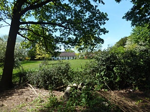 Trip to Haslemere Educational Museum and Swan Barn Farm (National Trust) tickets