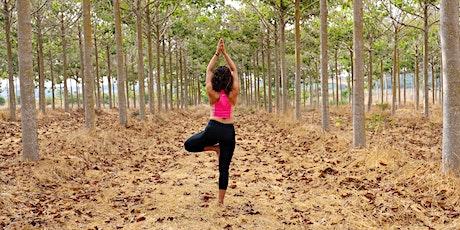Fall Equinox Yoga & Meditation Retreat tickets