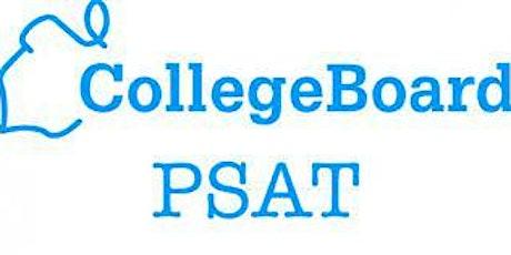 P-SAT tickets