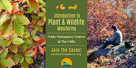 Introduction to Plant & Wildlife Monitoring for Conservation at The Fells tickets