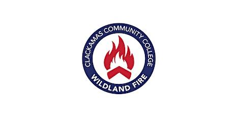 Intermediate Wildland Fire Behavior (S-290) tickets