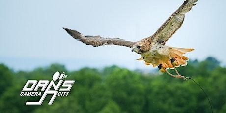 Photo Workshop: Birds of Prey - Raptors in Flight! tickets