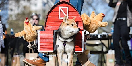 23rd Annual Great PUPkin Dog Costume Contest tickets