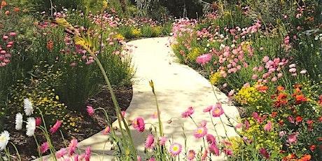 Kings Park Wildflower Walk tickets