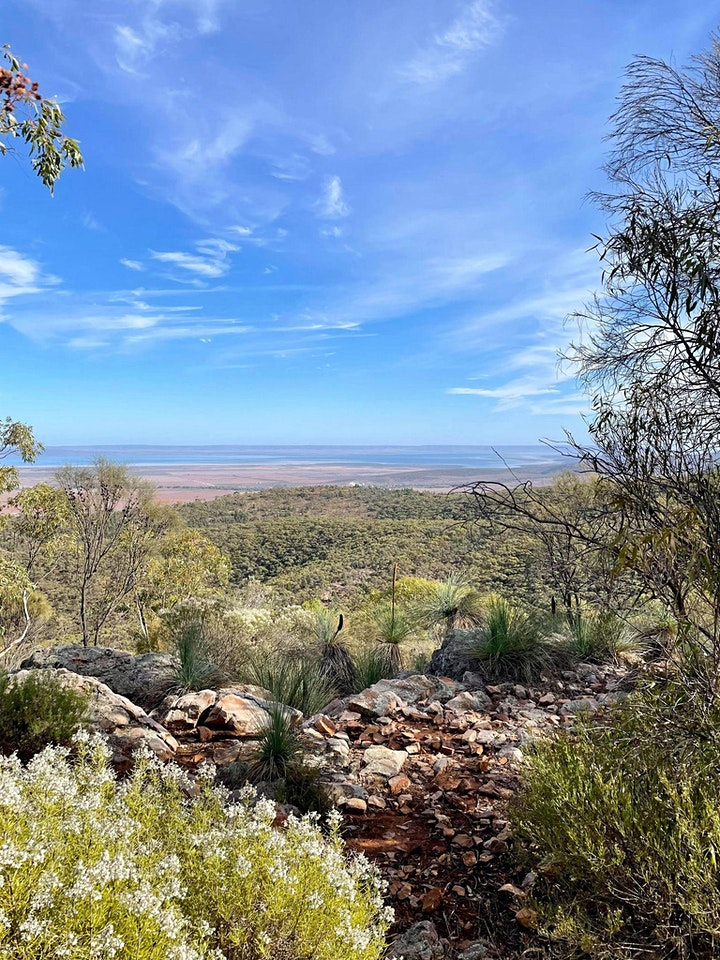 Breathe & Be - 3 Day Flinders Ranges Camping Retreat with Riverdell image