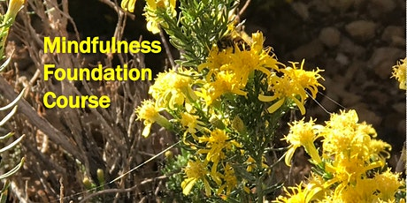 Mindfulness Foundation Course starts 19 Oct 2021 - Simei (4 sessions) tickets