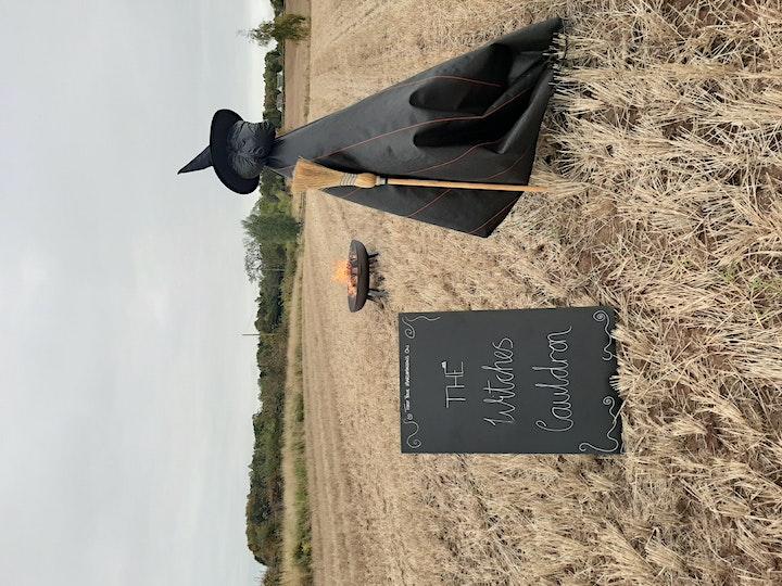 Pumpkin Picking 2021 South Ardbennie image