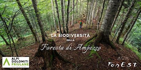 La biodiversità della Foresta di Ampezzo biglietti