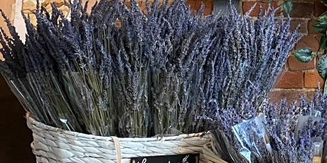 Aromatherapy Balance Bundles: Lavender Design Class tickets