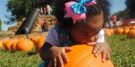 Sweet Little Pumpkin Community Baby Shower tickets