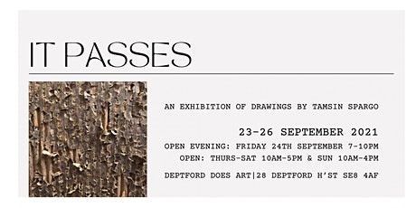 IT PASSES   EXHIBITION OF DRAWINGS BY TAMSIN SPARGO tickets