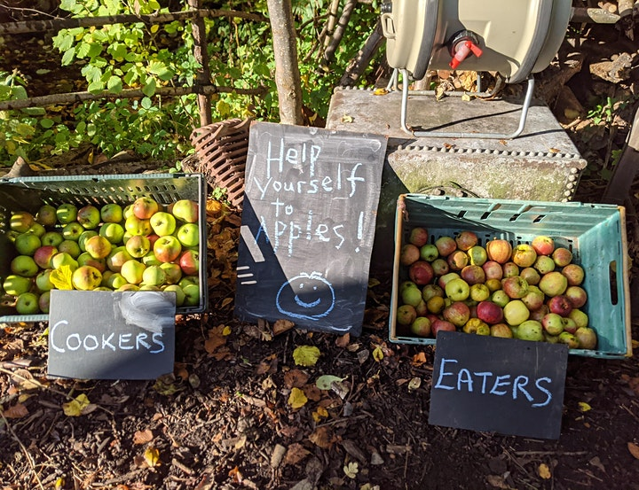Community Open Day on St Ann's Community Orchard image