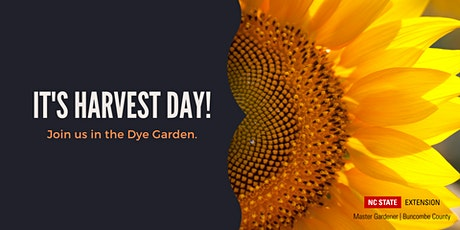 Demo at The Learning Garden: Harvesting Dye Plants tickets