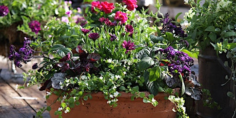 Second Summer Container  Workshop - create stunning summer colour tickets