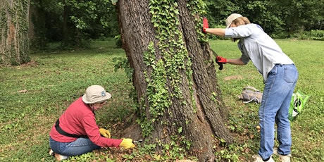 Sligo Creek Weed Warrior & Cleanup for National Public Lands Day! tickets