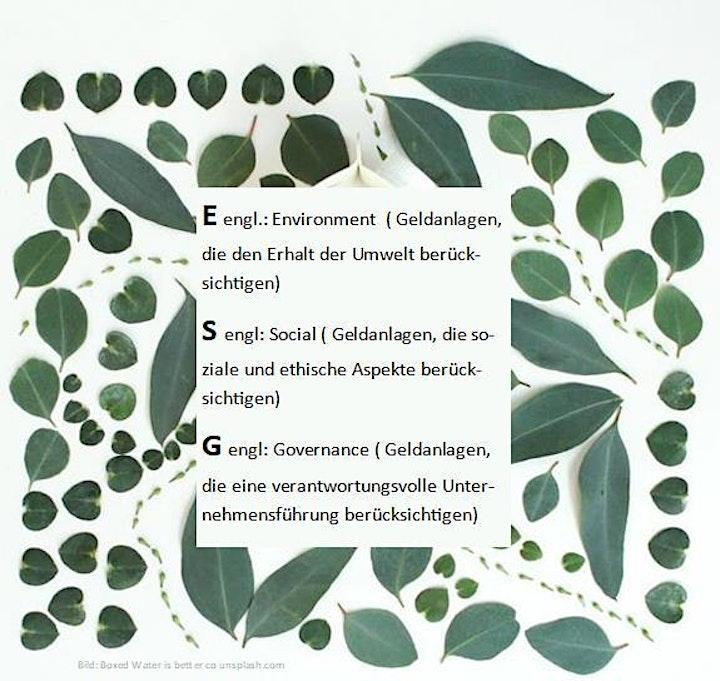 Nachhaltige Geldanlagen - grün, sozial, ethisch korrekt - 14:00 Uhr Webinar: Bild