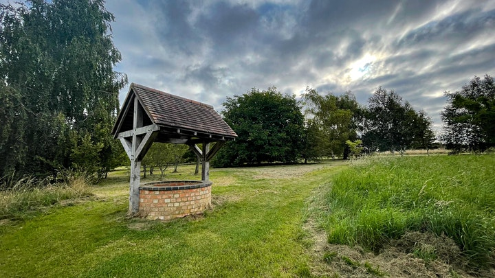 Free Heart of England Forest Walk image