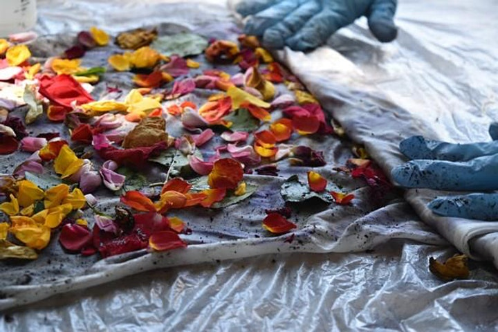 Natural Dye Workshop with Soul Studio image