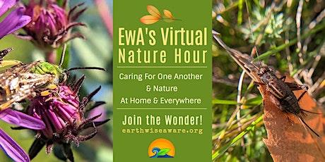 EwA Virtual Nature Hour tickets
