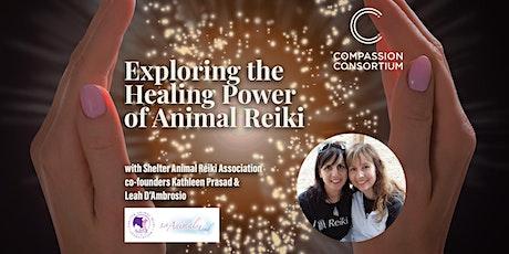 Exploring the Healing Power of Animal Reiki tickets