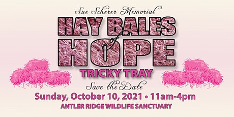 Pink Hay Bales of Hope Fundraiser for Antler Ridge Wildlife Sanctuary tickets