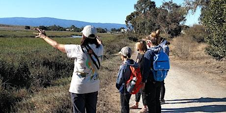 EV Trail Tours - Baylands Nature Preserve tickets