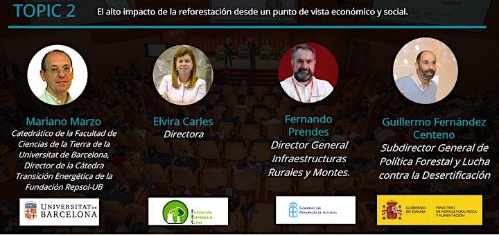 Imagen de Mercados voluntarios de carbono y compensación mediante la reforestación