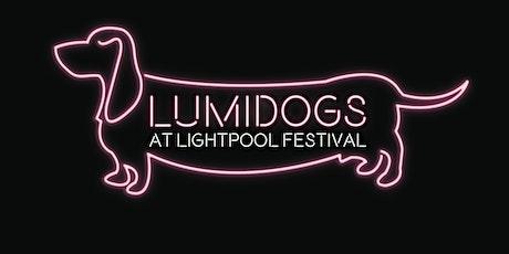Lumidogs Workshop at Art B&B Blackpool tickets