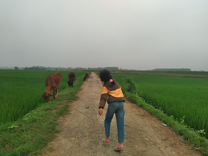 Travel to a village in Hoa, Vietnam! image