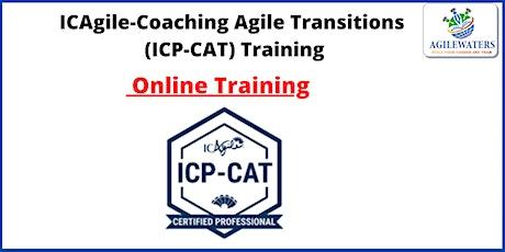 Enterprise Agile Coach (ICP-CAT) Certification Online Training tickets
