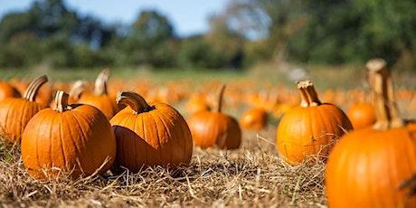 SECRET PUMPKIN - Pick Your Own Pumpkin in Moggerhanger, Bedfordshire tickets