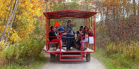 Fall Forest Wagon Ride tickets