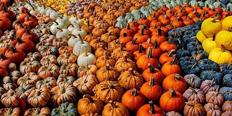 The Pumpkin Walk tickets