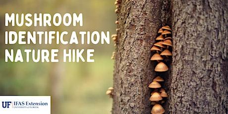 Mushroom Identification Nature Hike tickets