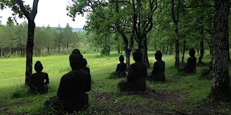 Beyond Awakening: Meditation for Uncertain Times tickets