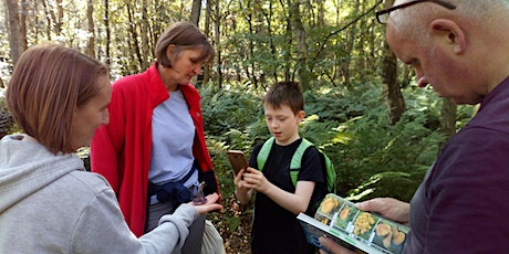 Fungi Identification for Beginners tickets