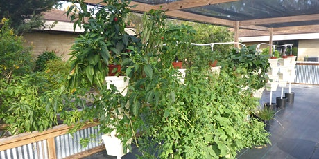 Homeowner Hydroponics Hybrid Course tickets