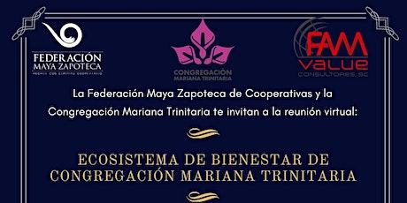 Ecosistema de Bienestar de Congregación Mariana Trinitaria entradas