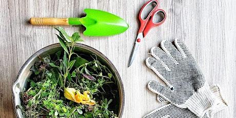 Natural Roots Wellness presents Elixir Kitchen: Neighborhood Foraging tickets