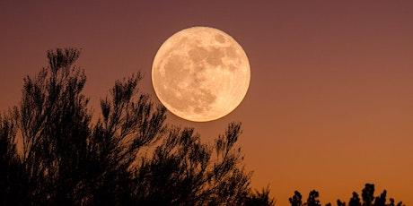 Autumn Equinox + Full Moon 108 Sun Salutations tickets