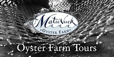 Oyster Farm Tour tickets