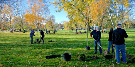 Tree Planting - New Dundee tickets