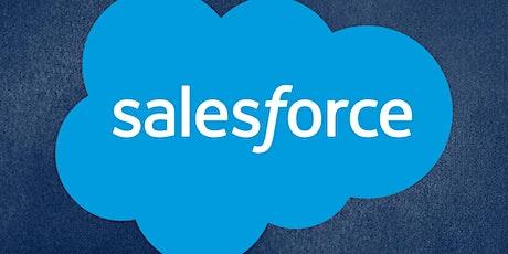 Salesforce Workshop - POC Workforce Development tickets