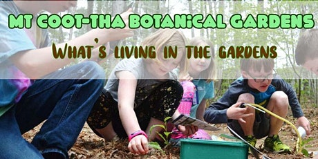 GSHS Mt Coot-tha Botanical Gardens what's living in the gardens 5 - 10 yrs tickets
