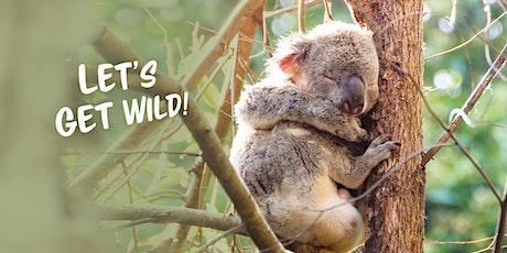 Noosa Biosphere Wild Koala Gala 2021 tickets