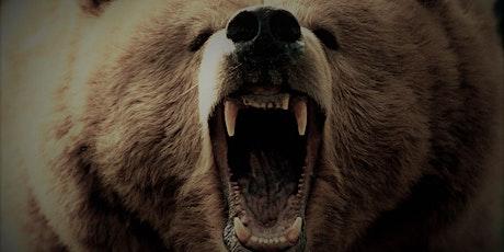 Befriending the Bear- Spirits of Addiction Healing Circle-Online tickets