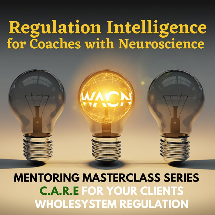 Regulation Intelligence Mentoring Masterclass Series for WIN Coaches image