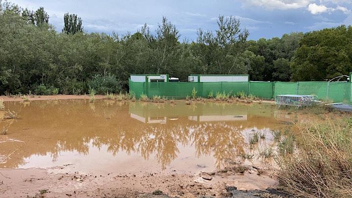 Imagen de Ayúdanos a recuperar El Bosque Sonoro