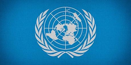 Simulazione ONU biglietti