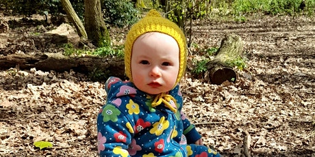 Wild Babies at Bradfield Woods - Monday 27 Sept EOC 2819 tickets